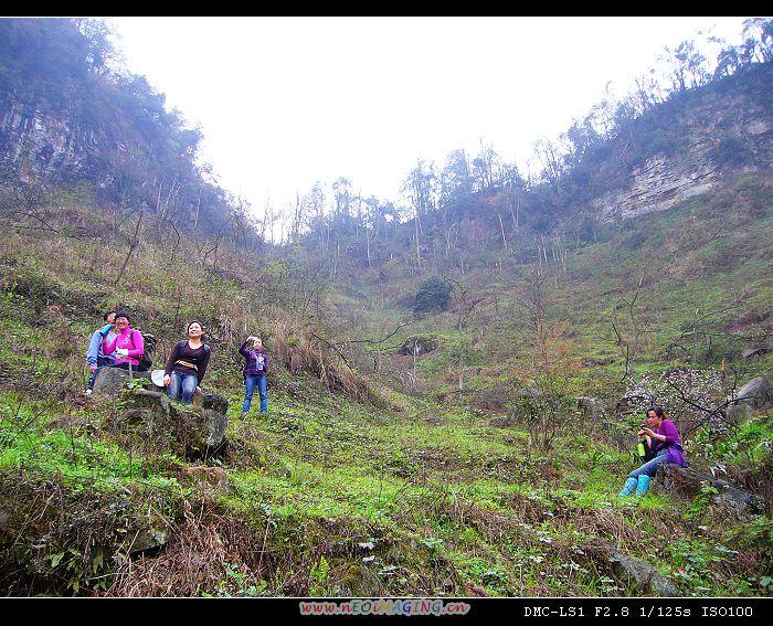 铜锣坝国家森林公园----登山则情满于山(4)