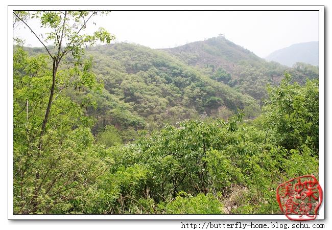 淋漓湖是博山樵岭前风景区的景点之一,位于樵岭前村西