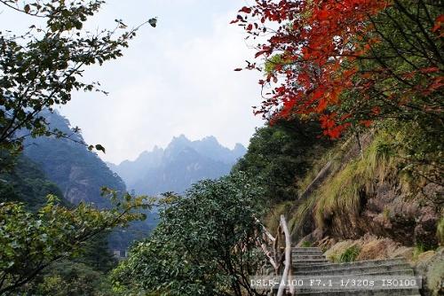 很快到达黄山风景区的云谷寺入口,买了门票,费用200元,这时时间才下午