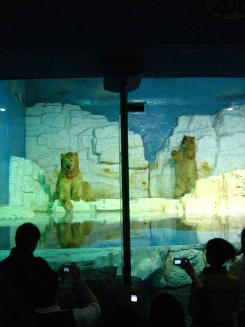 大连极地海洋动物馆(一)