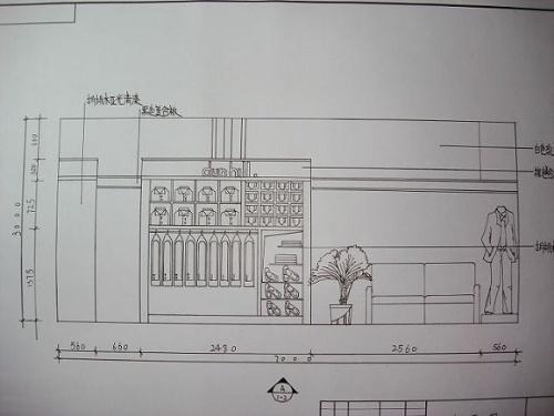 中道三视图
