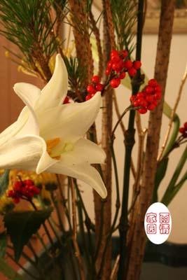 用若松,竹子和千两等做成门饰,摆放在玄关等处,是日本人迎接新年的