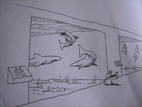 小孩画的动物简笔画