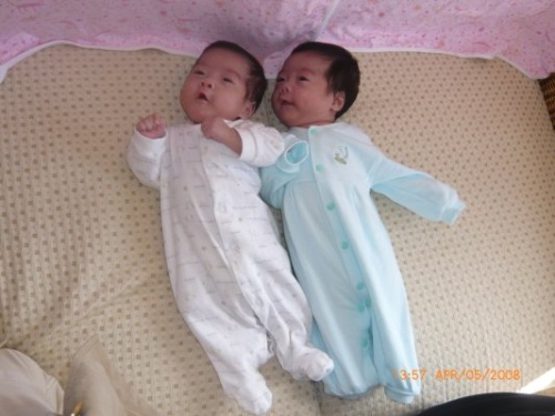我家的新成员,超级可爱的三胞胎~~~-小恶魔vikki-搜狐